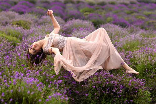 in lavender garden   by Krzysztof Łakomski