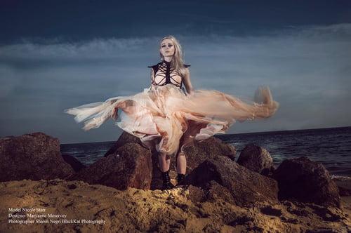 Work  by Maryanne Meservey , BlackKat Photography , Midnight Starr
