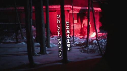 """Shortwaves Trailer""   by Lesley Belo-brown"