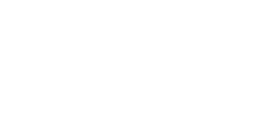 Vixen Girl Collective